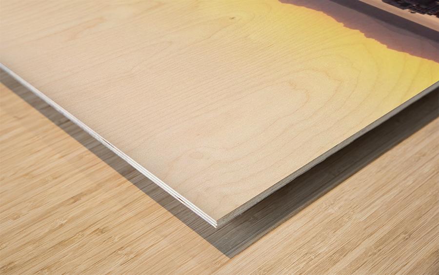 100_1064 Wood print