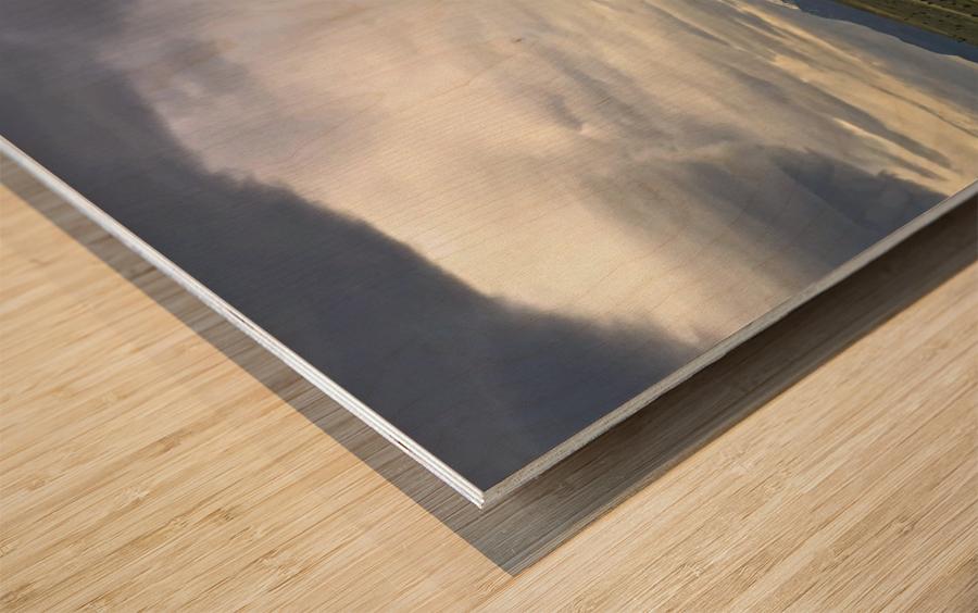 Shasta 1 Wood print
