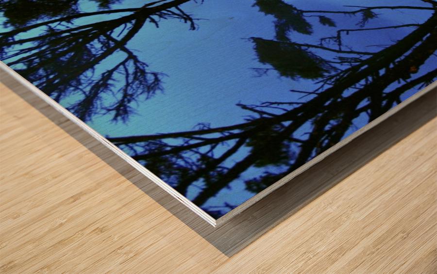 Long Exposure Night Coast Wood print