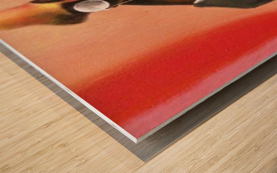 bonifance222 Wood print