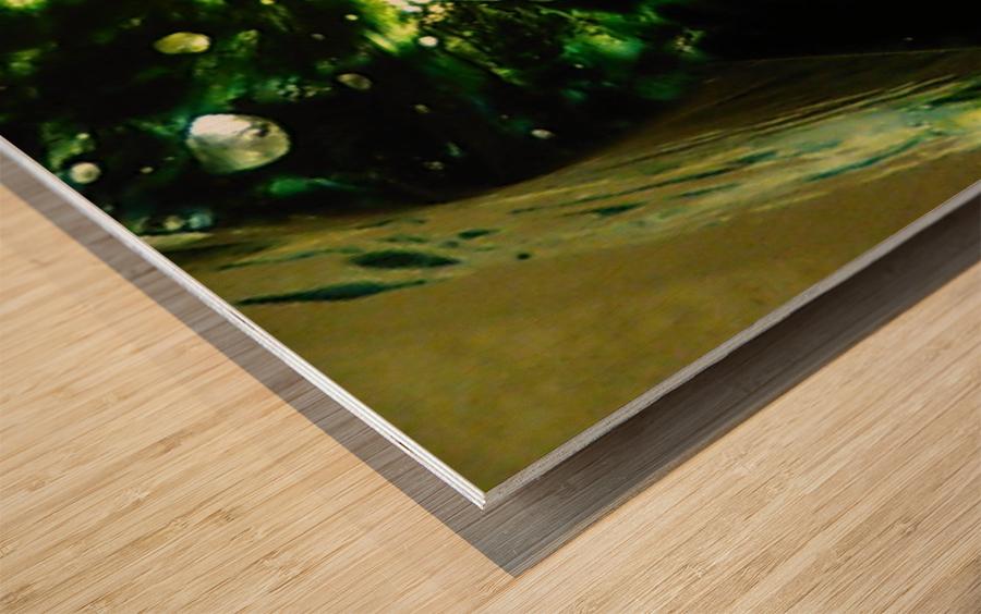 1538540453882 Wood print