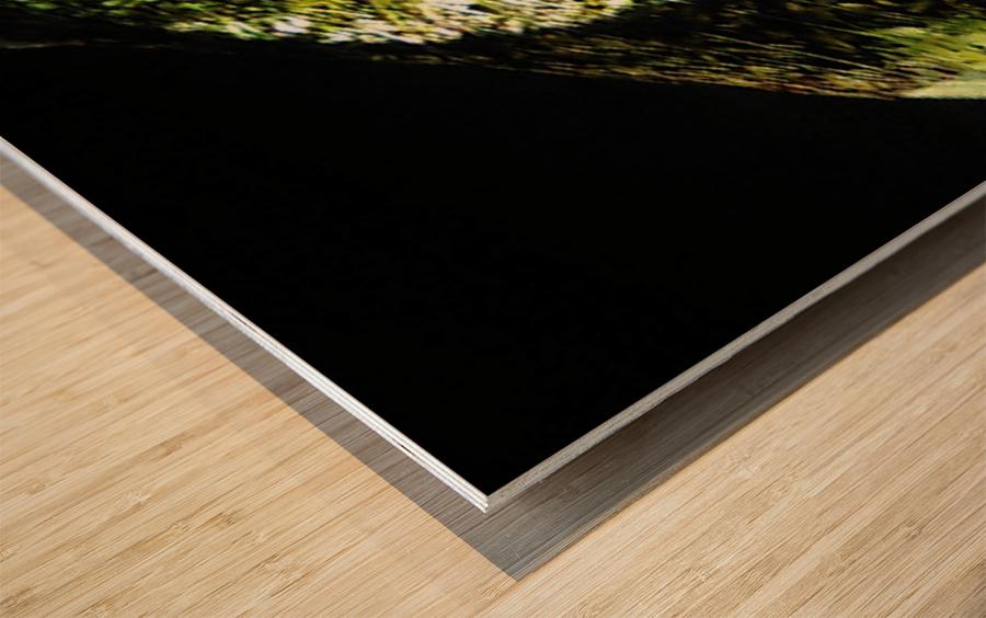 1538532649105 Wood print