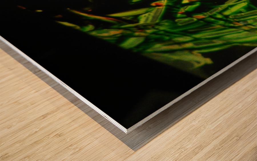 IMG_20181004_073640 Wood print