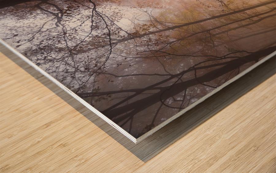 Mistyc mist Wood print