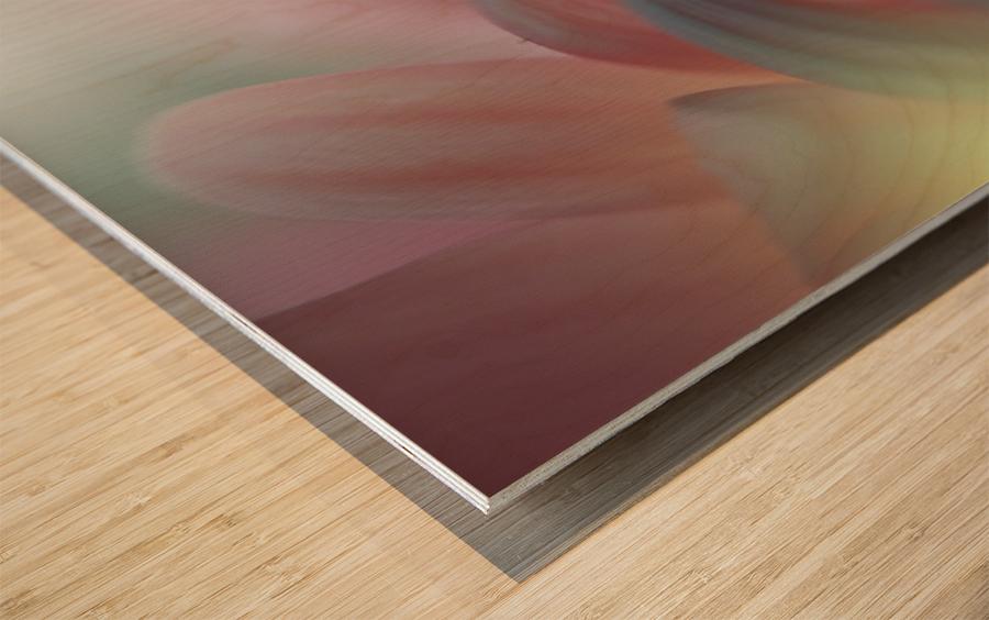 Sunbeam..II Wood print