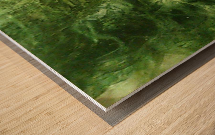 1539910351967 Wood print