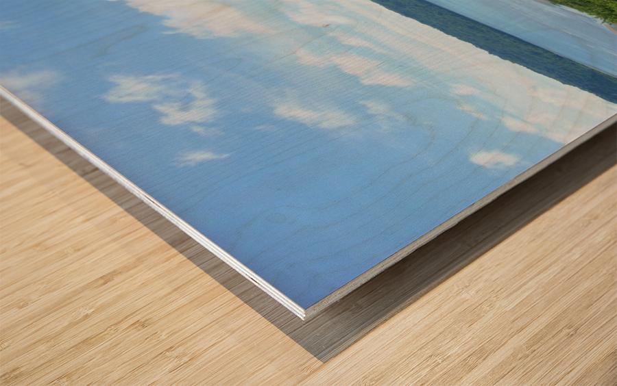 Landscape3 Wood print