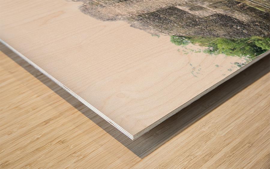 Myan12 Wood print