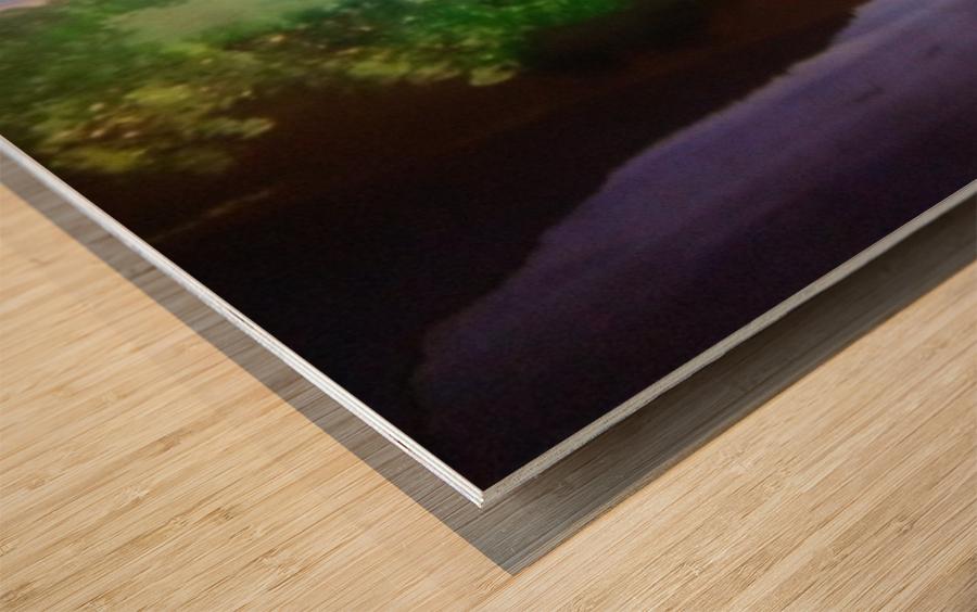 1028182222 Wood print