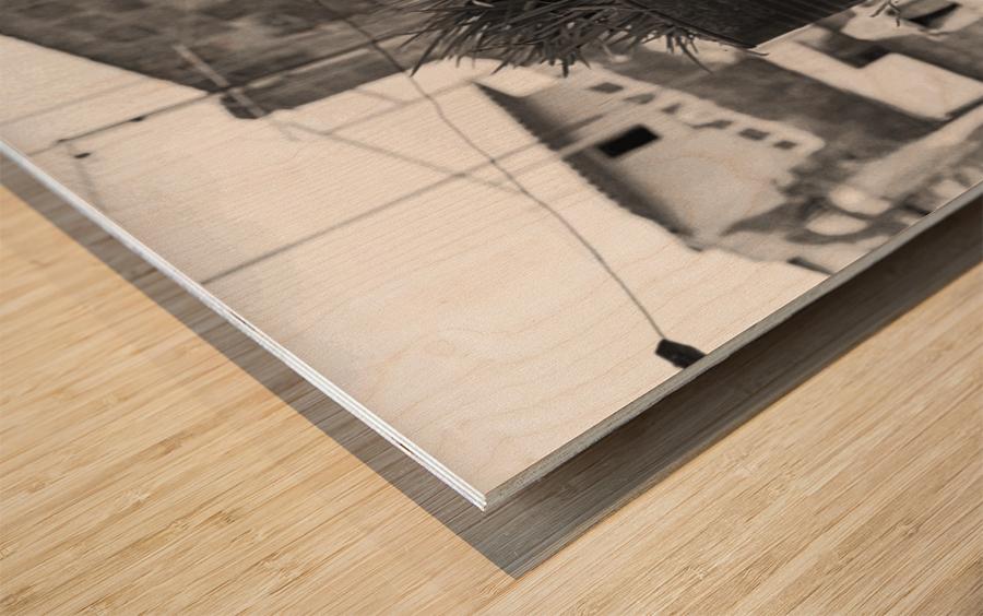 Fu Bidone Wood print