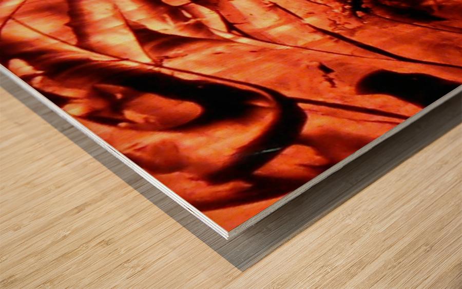 1542153503799 Wood print