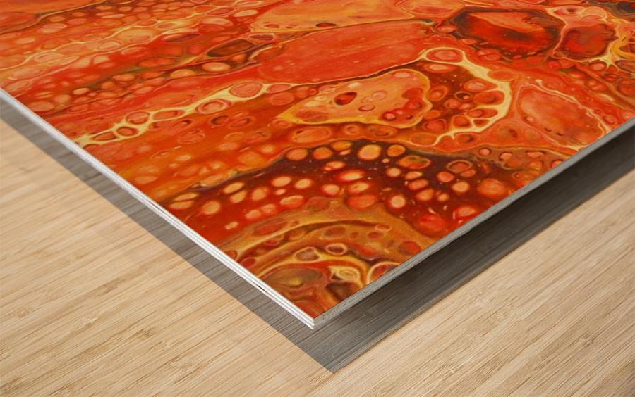 Kalahari Desert Wood print