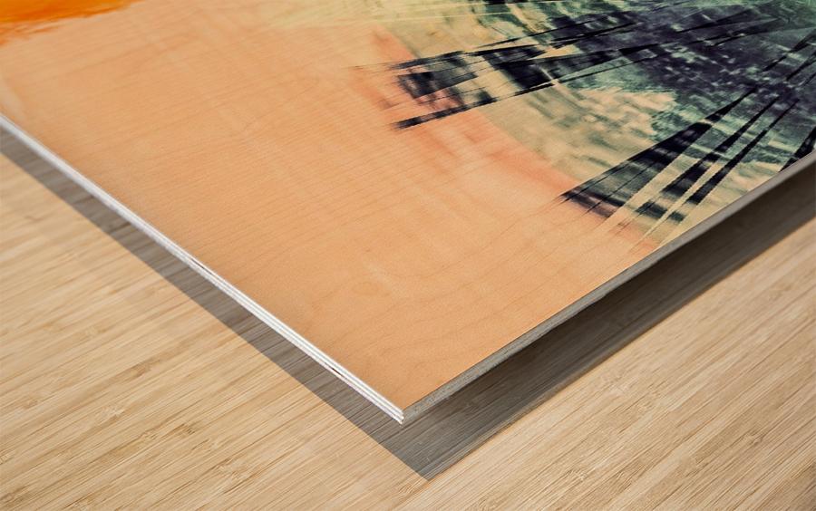 A23E0955 B673 42EB 922A A3E18F00A7BF Wood print