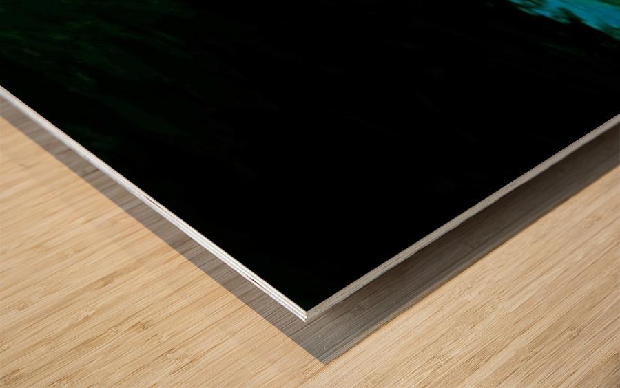E12098B3 ADD9 4FD9 B454 26D13142AC6C Wood print