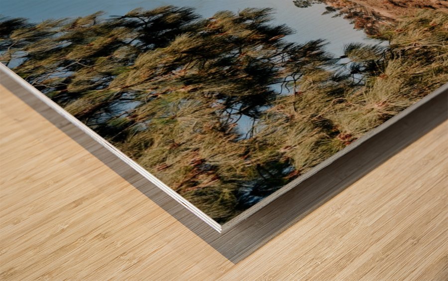 Griffith Observatory Impression sur bois