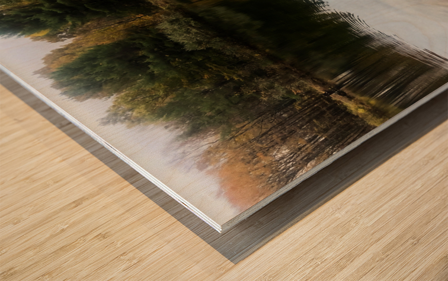 FALL RETREAT Wood print