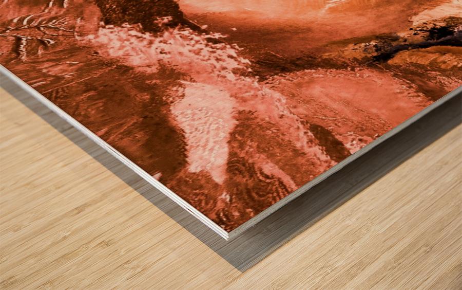 8147F435 9509 4FC1 909D 0A616A9E2691 Wood print