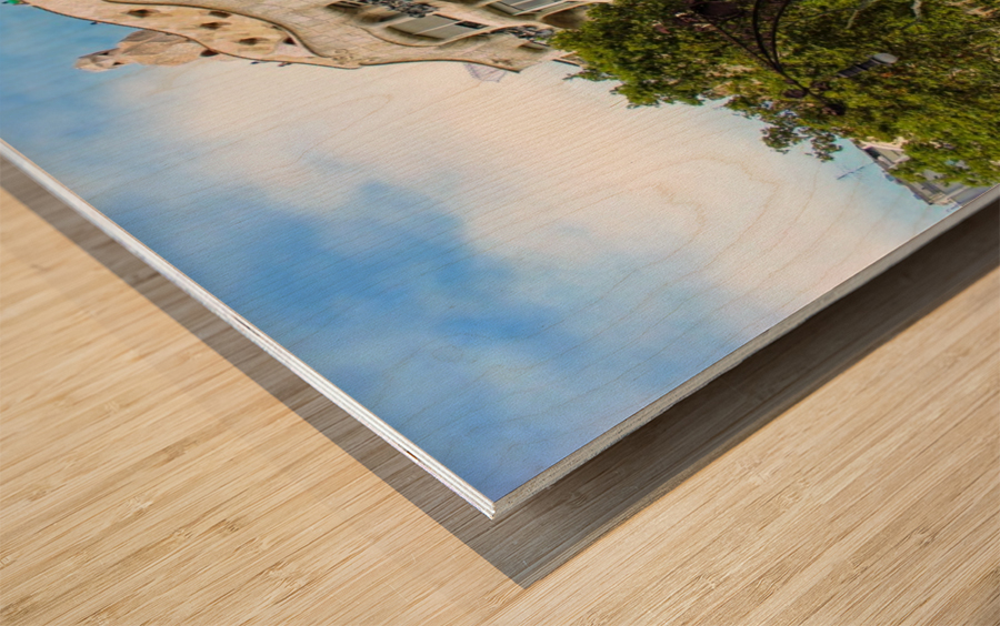 Spain Landscape - Casa Battlo   Wood print