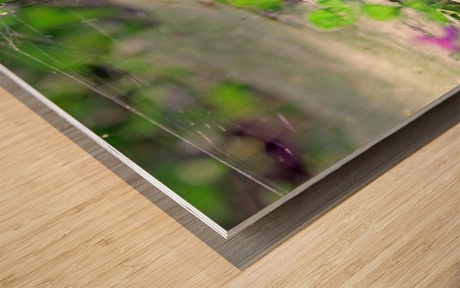 Crawling Wood print