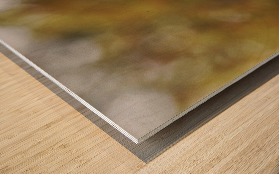 DSC_0026 Wood print