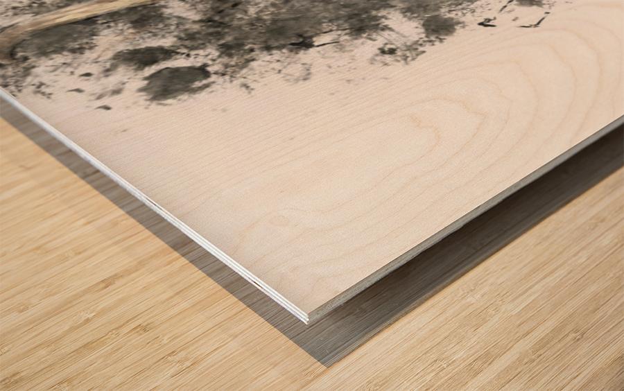 Peek a Boo Coo Wood print