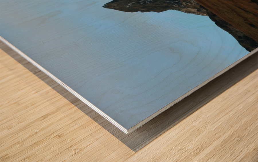 The Cobler  Wood print