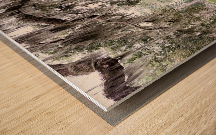 Hello Bubba Wood print
