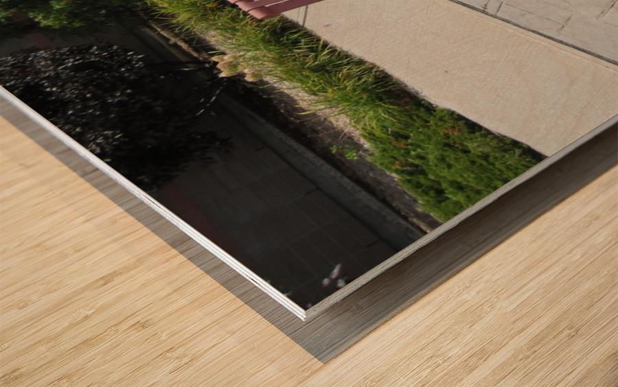 Bench (50) Wood print