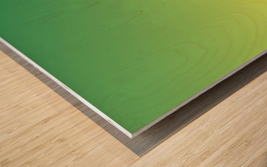 New Popular Beautiful Patterns Cool Design Best Abstract Art (49) Wood print