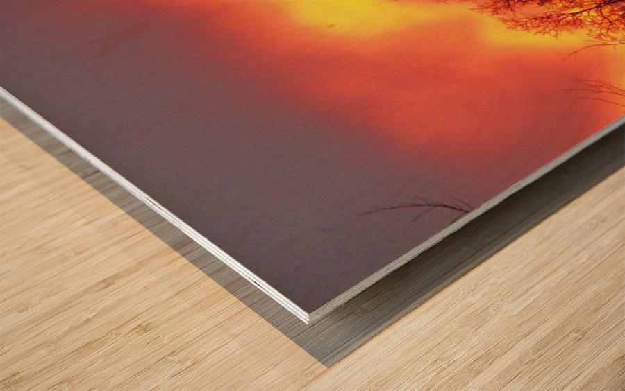 Sunset 1 Wood print