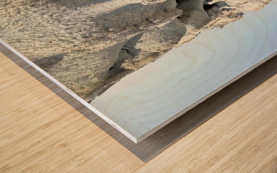 The White Monk  Wood print