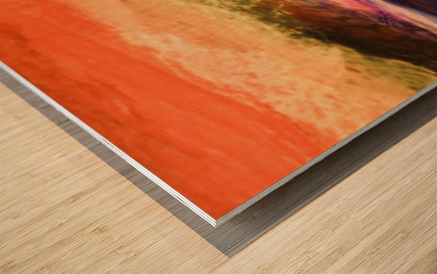C995A81E 0B38 44EA 9855 B0E77A60B600 Wood print