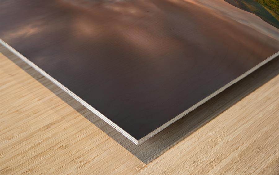 The Endless Sun Wood print
