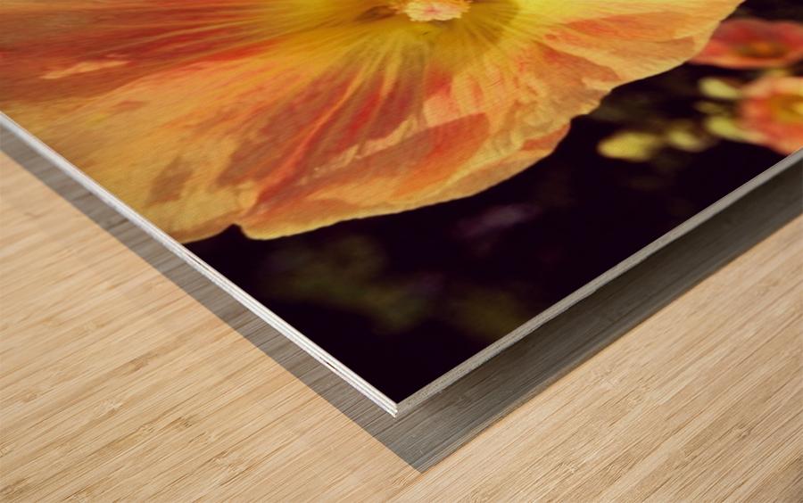Mid Summer Blossom Wood print