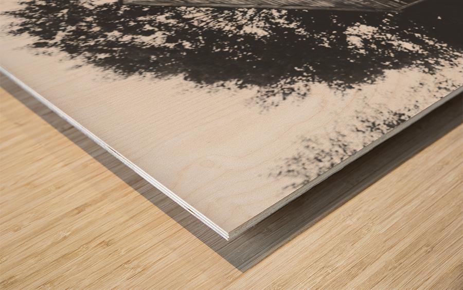 Abandonment Wood print