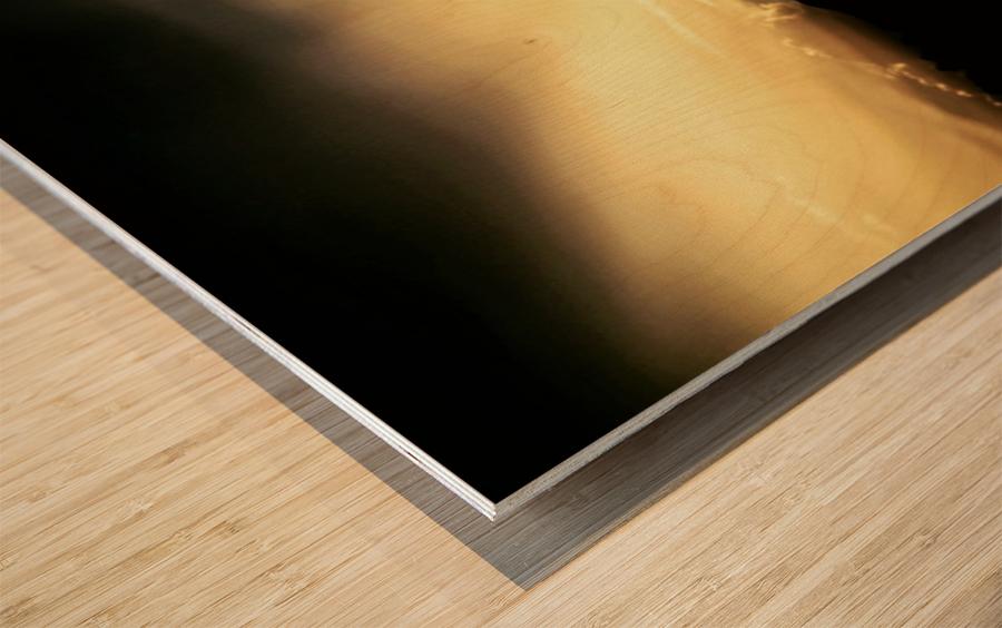Ray of light Wood print
