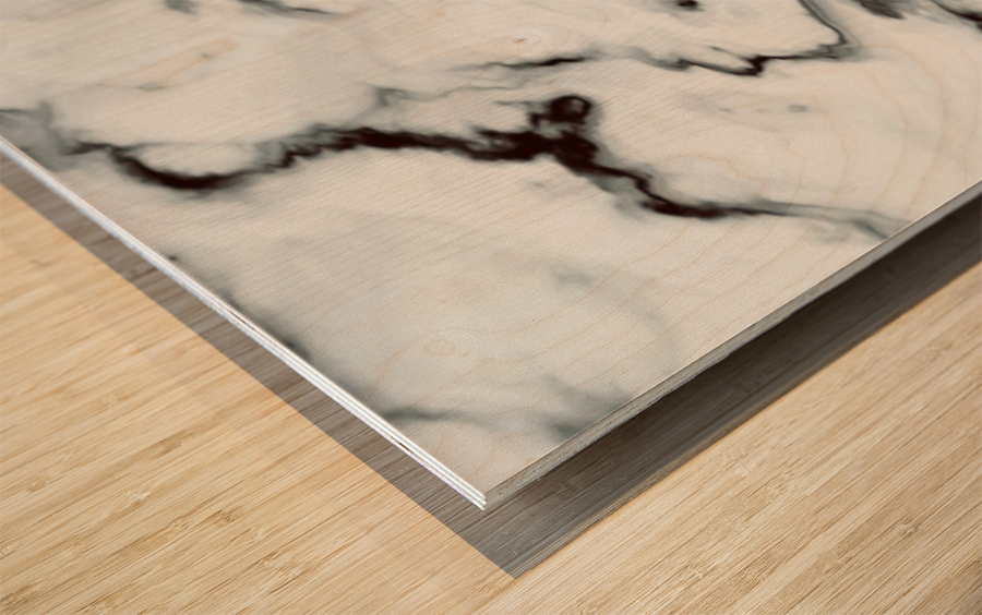True White Marble - panoramic abstract wall art Wood print