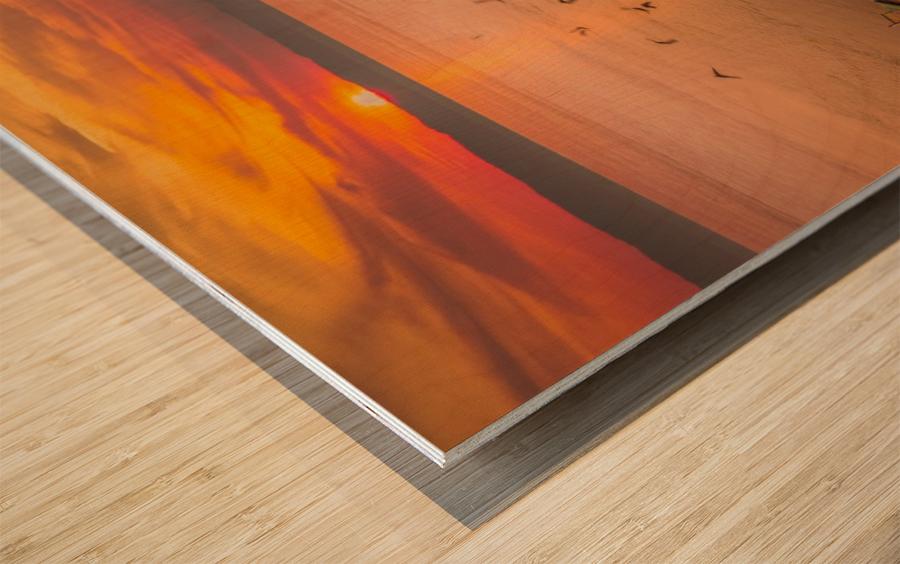 _DSC9571 Wood print