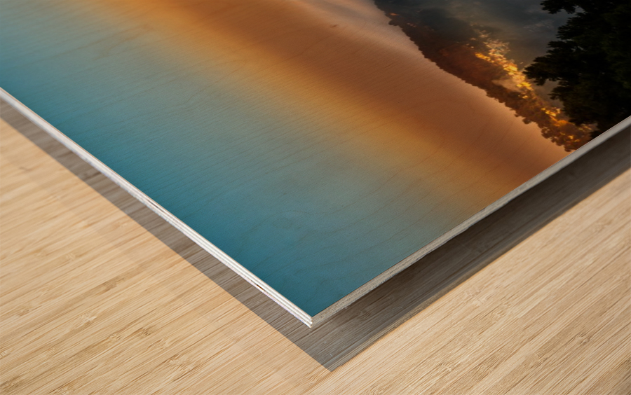 DSC_8725 Wood print
