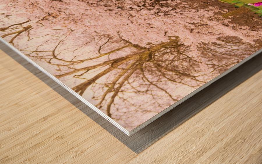 Blossom Tree Wood print