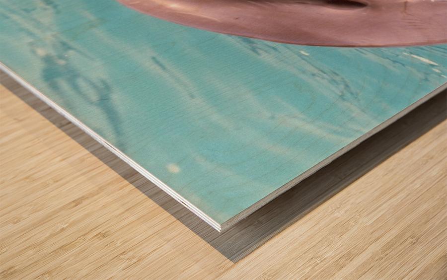 Happy Dolphin Photograph Wood print