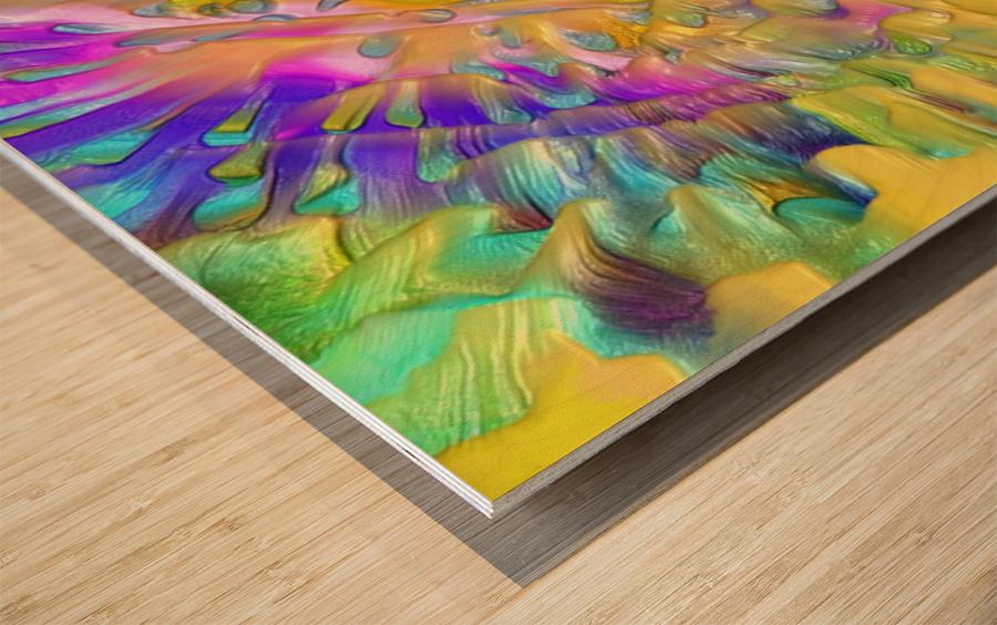 206 Wood print