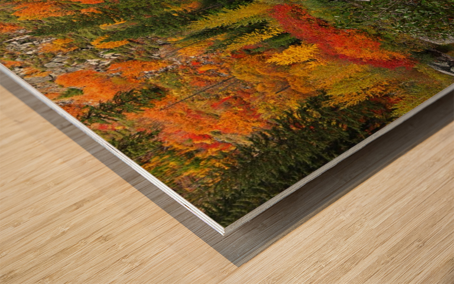 autmn daze Wood print