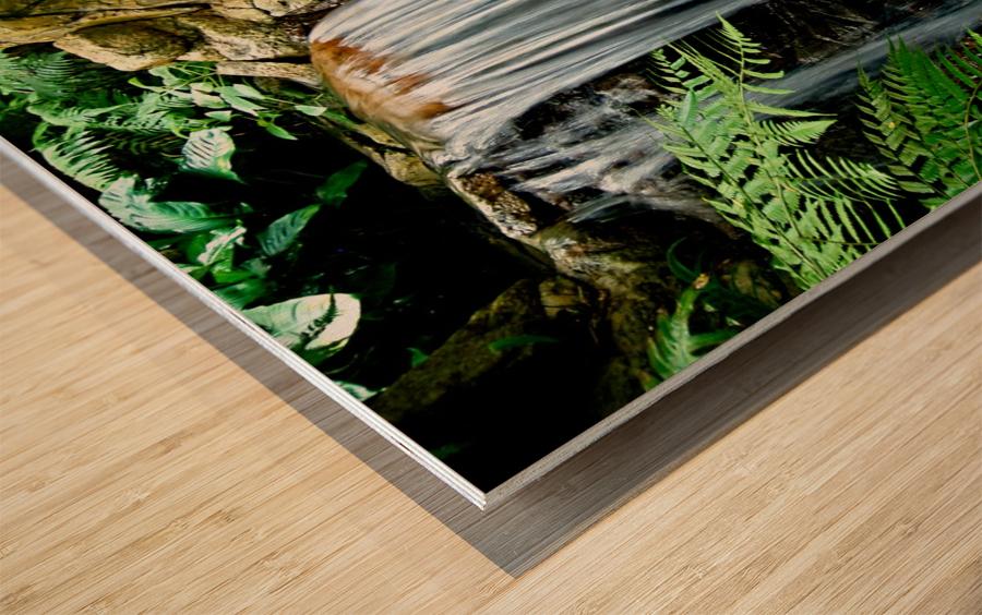 LIttle Hong Kong Park Waterfall Wood print
