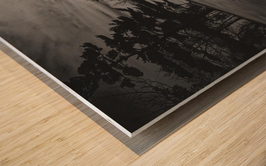 Empty Bench Wood print