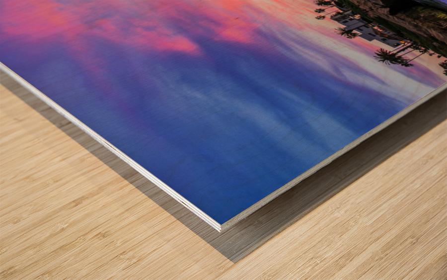 Miss La Jolla Wood print