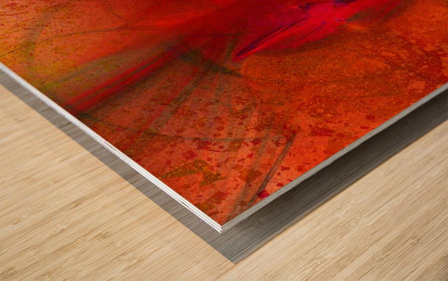 Orion by Jean-François Dupuis Wood print