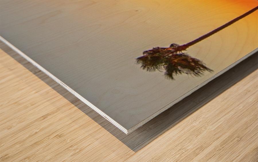 Kalifornikation Wood print