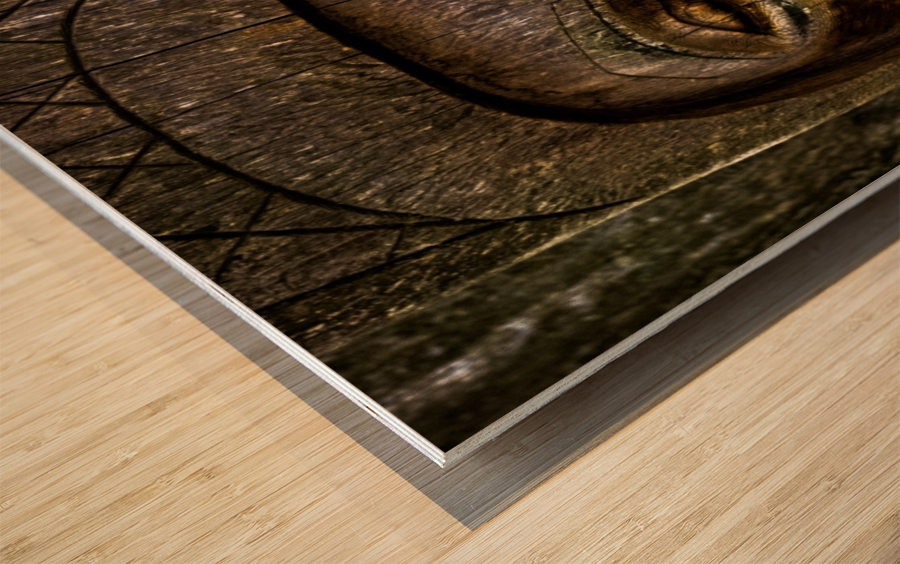 Venerable Reflection Wood print