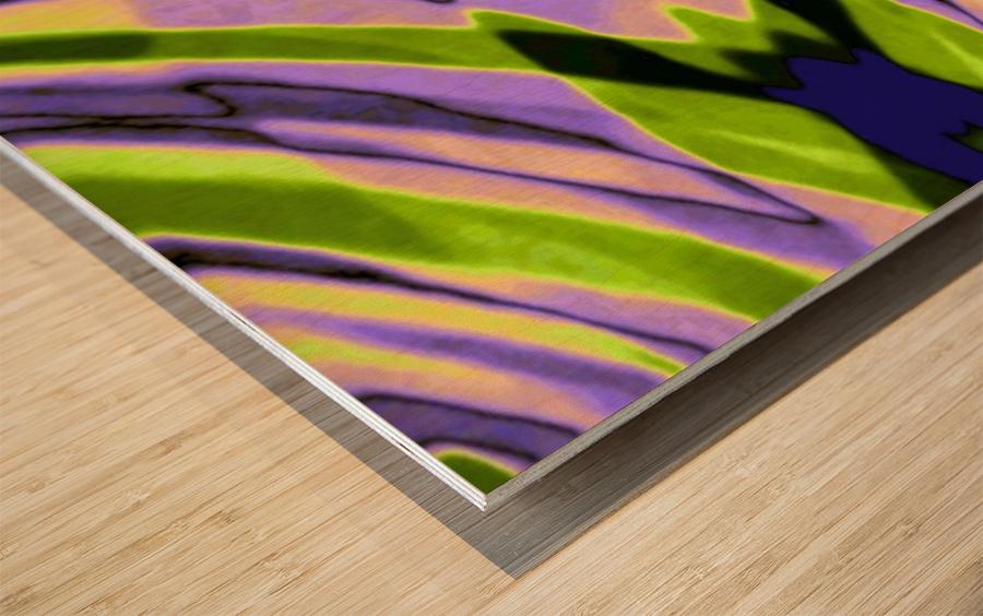 Capstone Pictures  Wood print